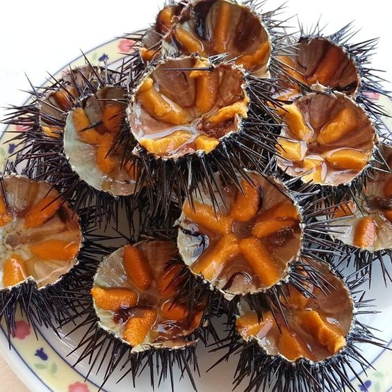 Exotic Food in the Philippines